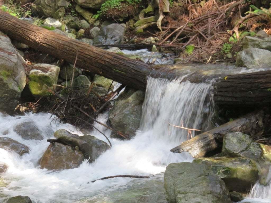 Creek Water Running Over Log